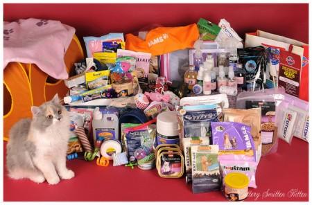 Kittenpakket met extra verzorgingsspulletjes voor een showpoesje